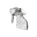 Album Art: A Rush of Blood to the Head by Coldplay